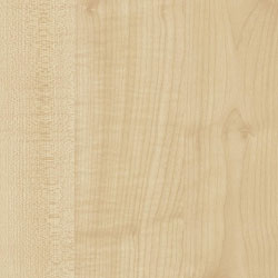 Natural Maple Wood