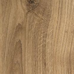 Eternal Oak Wood